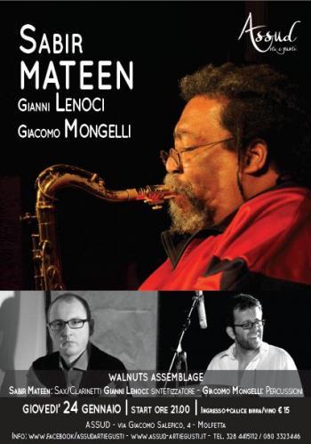 Mateen, Lenoci, and Mongelli concert poster